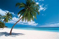 Gagnez un séjour en République Dominicaine